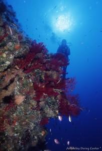 I centri diving